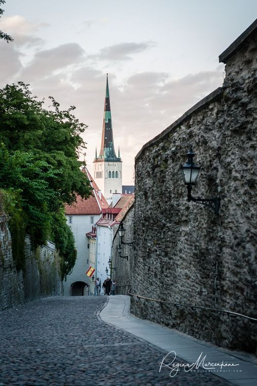 Medieval Days in Tallinn Old Town / Дни Средневековья в Таллинне